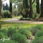 Jardins de Glanum